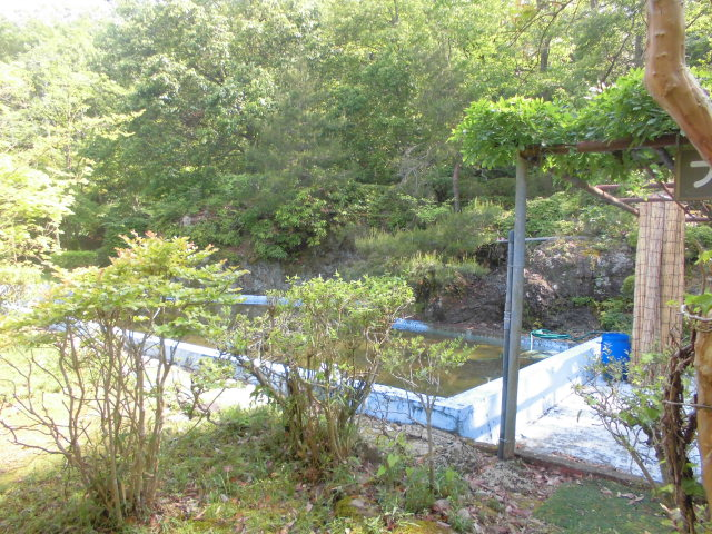 日ヶ奥渓谷キャンプ場のプール
