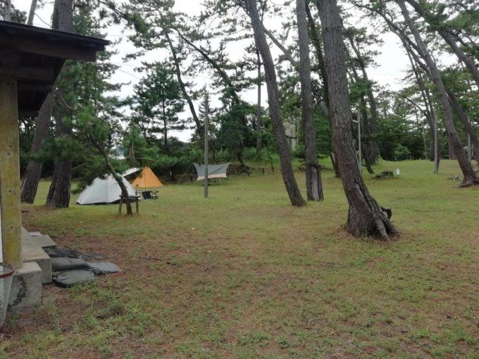 若狭和田キャンプ場のソロキャンプエリア