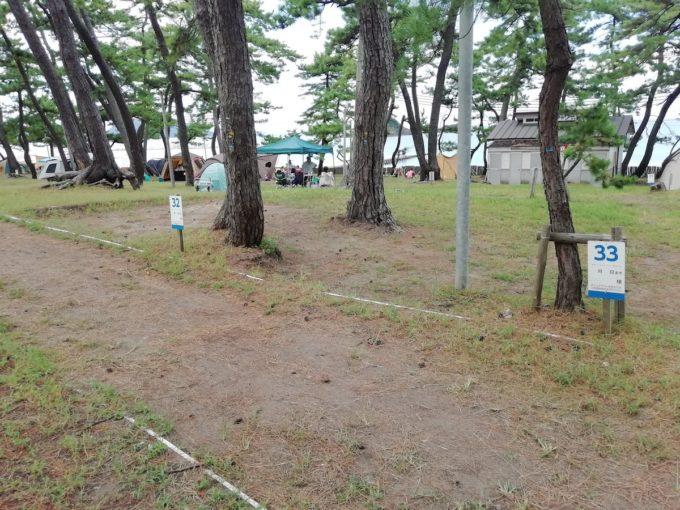 若狭和田キャンプ場の区画サイト