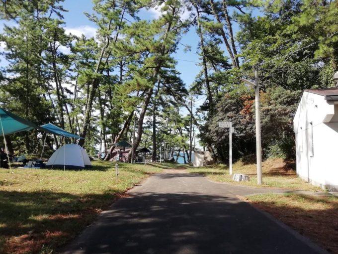 若狭和田キャンプ場のテントサイト